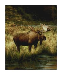 "Penny Rose Majestic Outdoors 2 Digital Moose 36"" Panel"
