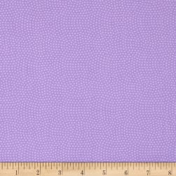 Timeless Treasures Spin Dot Pansy Fabric