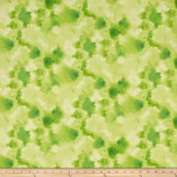 QT Fabrics Delaney Cloud Texture Light Green Fabric