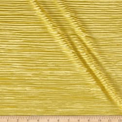 Pleated Bodre Knit Solid Curry Fabric