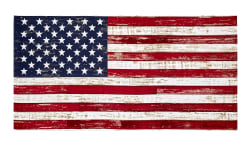 "Timeless Treasures American Pride 23.5"" American Flag Panel Flag"