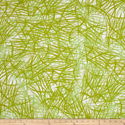 Kaufman Lucy And Ollie Slash Grass Fabric