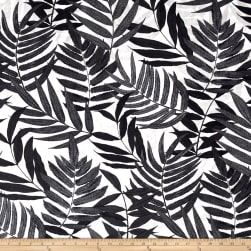 Covington Indoor/Outdoor Dafina Ebony Fabric
