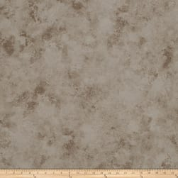 Fabricut 50020w Valuable Wallpaper Chinchilla 02 (Double Roll)
