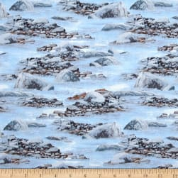 Roaming Wild Rocks and Water Light Blue Fabric
