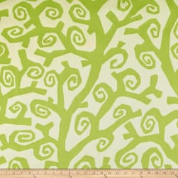 Clarence House Outdoor Ramo Green Fabric