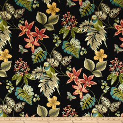 Swavelle/Mill Creek Embree Noir Fabric