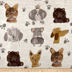 Swavelle/Mill Creek Best in Show Jacquard Fabric
