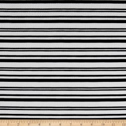 Liverpool Double Knit Stripes Black