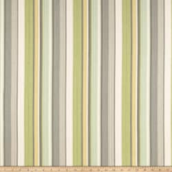 Waverly Draw the Line Spring Duck Fabric