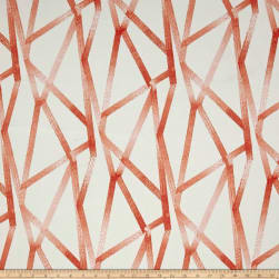 Genevieve Gorder Outdoor Intersections Coral Fabric