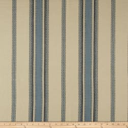 Laura & Kiran Canyon Stripe Canvas Blue/White Fabric
