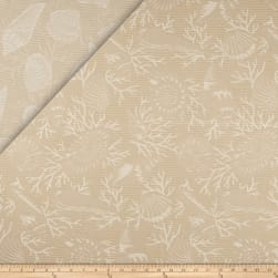 Sunbrella Outdoor Jacquard Beachcomber Dune Fabric