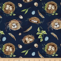 Wilmington Nature Study Nests and Eggs Navy Fabric