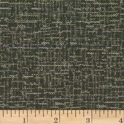 Crypton Imagine Jacquard Chinchilla Fabric