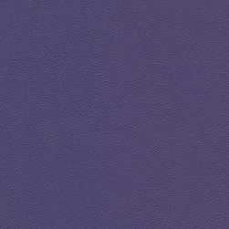 Morbern Allsport Vinyl Bright Violet Fabric