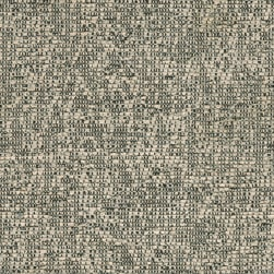 Abbey Shea Rhyne Chenille Birch Fabric