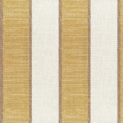 Abbey Shea Commuincation Ochre Fabric