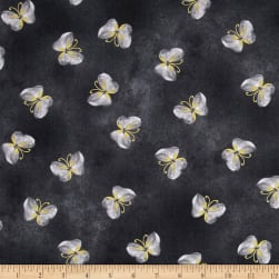 Kanvas Floral Impressions Butterfly Wash Dark Gray