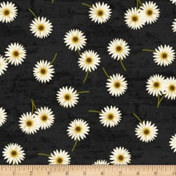 Wilmington Sunset Blooms Daisies Black Fabric