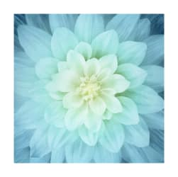 "Hoffman Digital Dream Big Flower 43""Panel Tidepool"