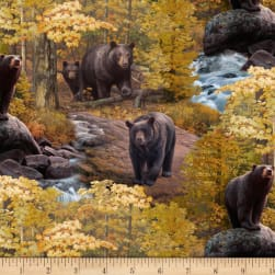Ursus Americanus Main Multi Fabric