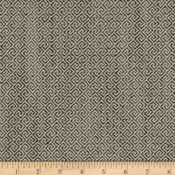 Swavelle/Mill Creek Tolleson Charcoal Fabric