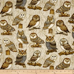 QT Fabrics Where The Wise Thing Owl One