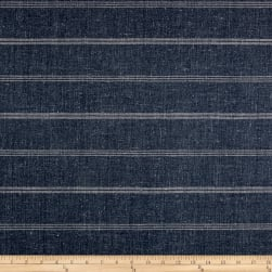 Richloom Segal Canvas Lapis Fabric
