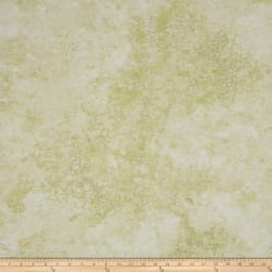 Stonehenge Gradations Basics Blender Desert Green Fabric
