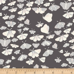 Night Hike Night Flight Dark Grey Fabric