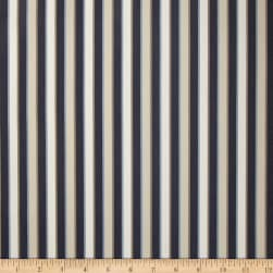 Duralee Outdoor DW16301 Stripe Blue/Brown Twill Fabric