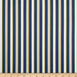 Duralee Outdoor DW16301 Stripe Navy