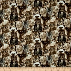 My Pet Family Kitten Collage Taupe Fabric