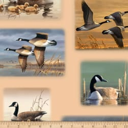 QT Fabrics Flying Geese Geese Vignette Patches Tan