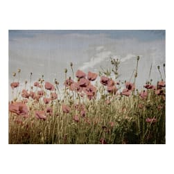 Photorealism Jacquard Wall Décor/Panel Poppies