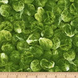 Timeless Treasures Veggie Bowl Brussel Sprouts Green Fabric