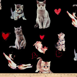 Double Brushed Spandex Jersey Knit Kitty Love on Black Fabric