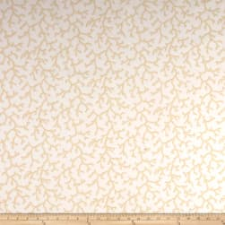 Thibaut Coral Beige on White Fabric