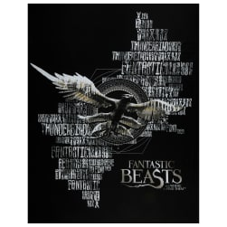 Wizarding World Fantastic Beasts 36'' Panel in Black Fabric