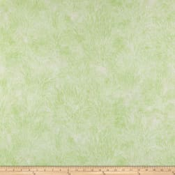 Susan Winget Coastal Living Coral Digital Woven Moss
