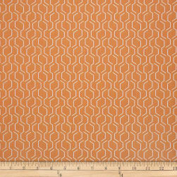 Sunbrella Adaptation 69010-0003 Apricot Fabric