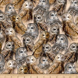 QT Fabrics Nocturnal Wonders Packed Barred Owls Stone