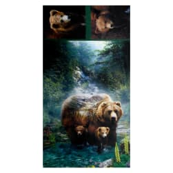 """Shannon Hoffman Digital Minky Cuddle 35"""" Panel Grizzly"""