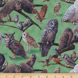 Owls of North America Assorted Owls Green Fabric