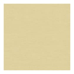 Kravet Couture Fluid Satin Marzipan 33983 4