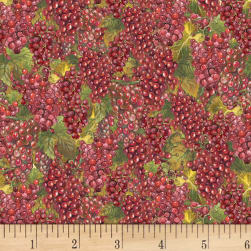 Wilmington Tuscan Delight Packed Grapes Red