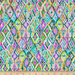 QT Fabrics Digital In The Groove Ikat5 Multi