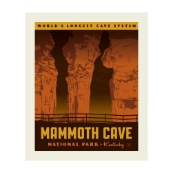 Riley Blake National Parks Mammoth Cave 36'' Panel Fabric