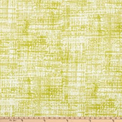 Swavelle Empower Outdoor Lime Fabric